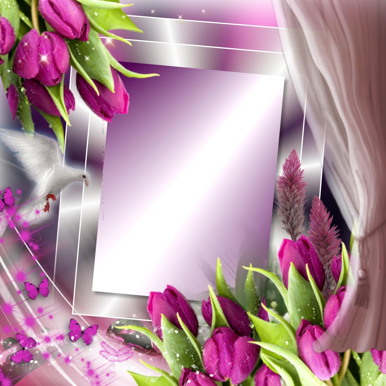Imikimi Beautiful Flower Frame Frameviewjdi