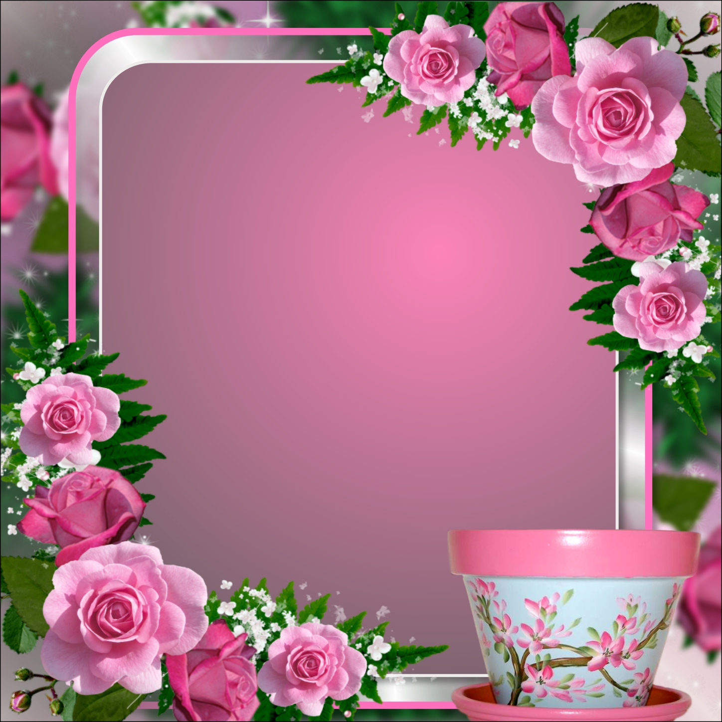 Pink Imikimi Rose Frame Beautiful Pictures Picturesboss